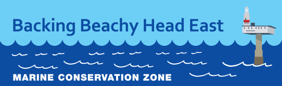 Backing Beachy Head East - Marine Conservation Zone