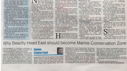 Why Beachy Head East should be made a Marine Conservation Zone by Stephen Llyod MP